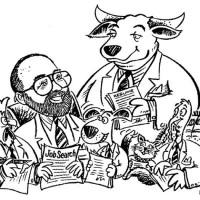 Illustration Beef and Poultry recruiter/Austin, TX